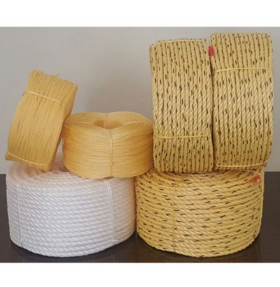 High Quality PP DANLINE ROPES